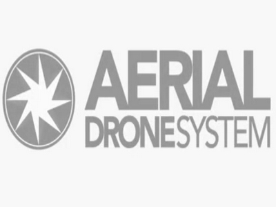 Aerial Drone System